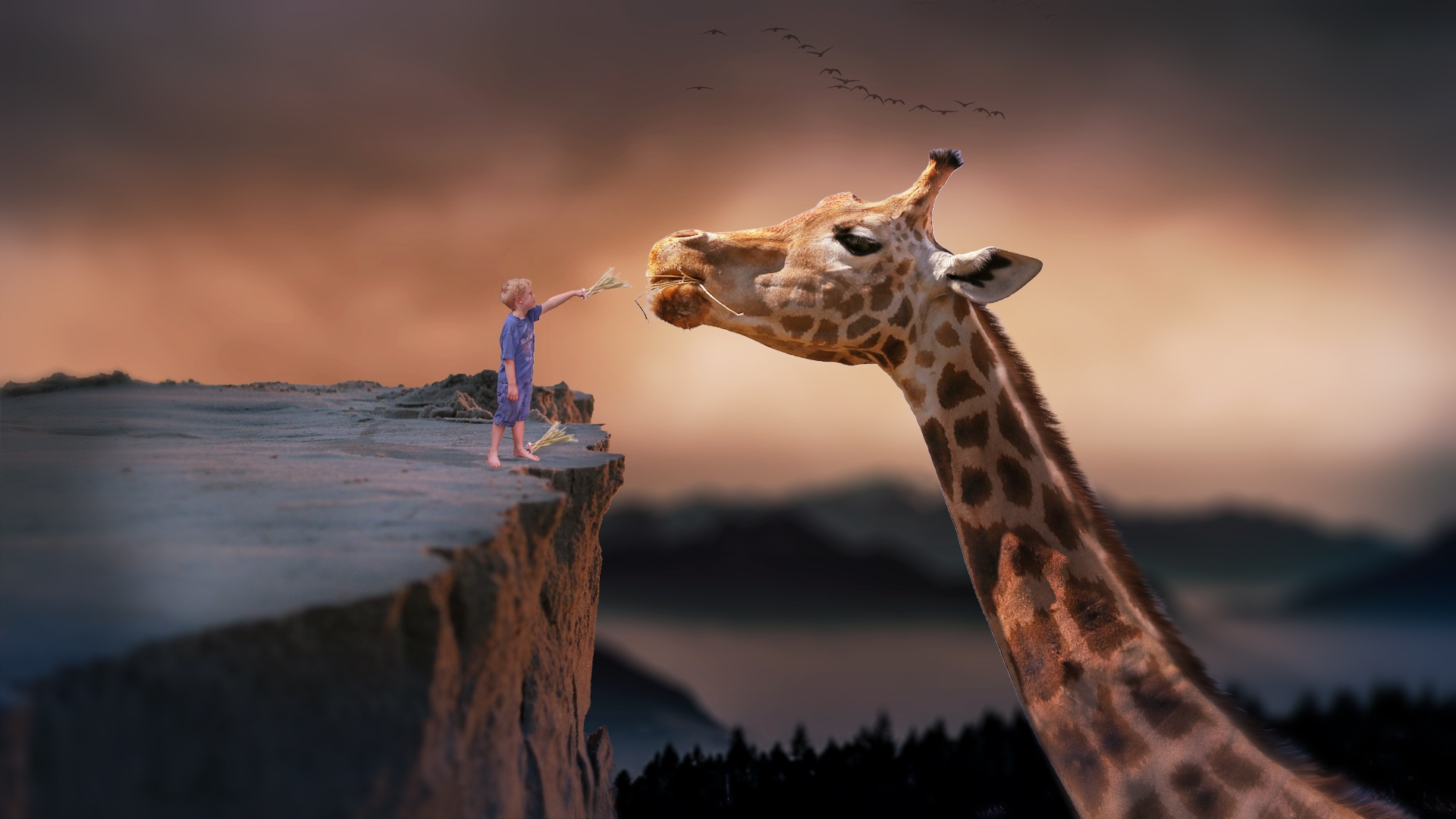 jirafa-nino-sueno-emprende
